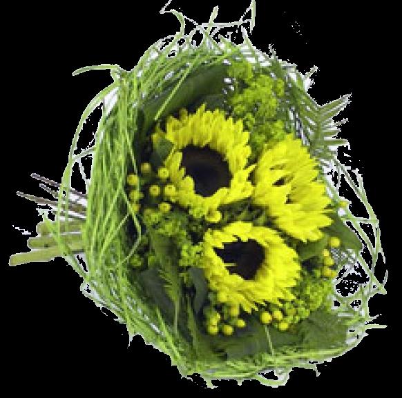 Bouquethalter Woody 25cm hellgrün 100 Stück