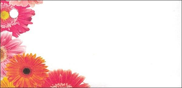 Blumenkarten Gerbera (100 Stück)