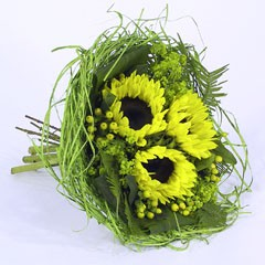 Bouquethalter Woody 20cm hellgrün 100 Stück