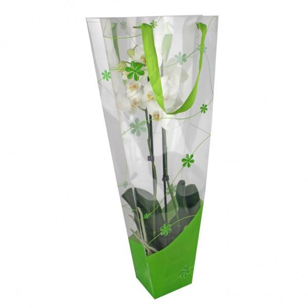 Tasche Orchideen Flow 12x11x70 grün (20 Stück)