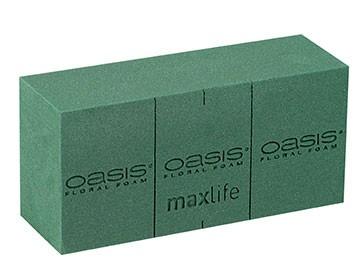 Oasis Ideal 20 Stück