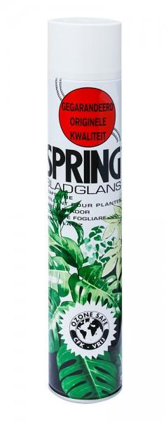 Spring Blattglanz 250ml (12 Stück)