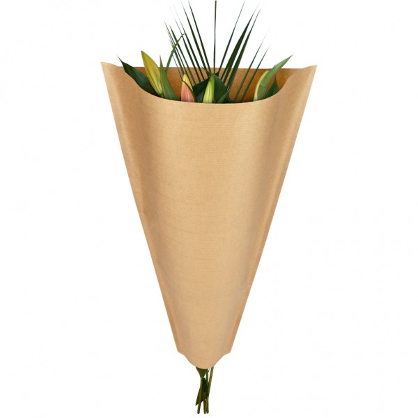 Blumentüten 40/30/12 45g braun kraft natur (50 Stück)