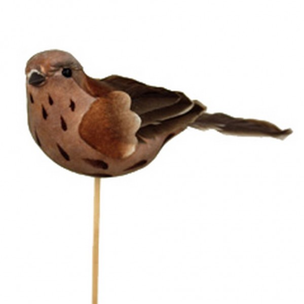 Beistecker Vogel Drossel (25 Stück)