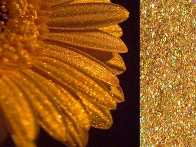 Glitter 902 300ml Diamant Gold