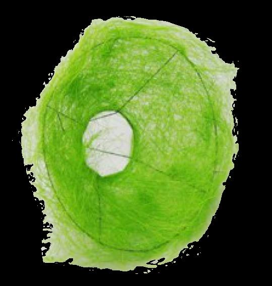 Bouquethalter Sisal 30cm grün 100 Stück