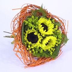 Bouquethalter Woody 20cm orange 100 Stück